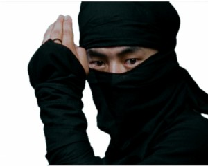 ninja_face-300x240